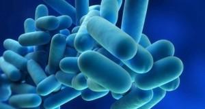 Cuatro-personas-mueren-por-enfermedad-del-legionario-en-EEUU-1440x900_c