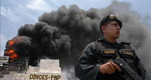 Incineran dos hectáreas de plantaciones de marihuana en el centro de Perú Agentes policiales de la comisaría del municipio Huacrachuco, en la región andina de Huánuco, hallaron las plantaciones ilegales en el centro poblado de Piso, a unos 500 kilómetros al norte de Lima.