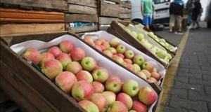 Materias primas, principales afectadas en A.Latina por alza de tipos en EEUU Vista de un cargamento de manzanas en el Mercado Agro-Alimentario.
