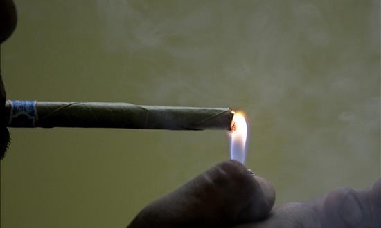 Legislador hispano propone permitir venta de marihuana en eventos públicos Un hombre fuma marihuana.