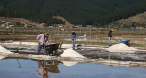Fotografía del 11 de enero de 2019, cedida por Innova Difusión, que muestra a salineros mientras trabajan en las piscinas de sal, cerca de la localidad de Cáhuil, en la región central de O'Higgins (Chile). EFE/Innova Difusión