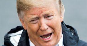 Donald J. Trump, presidente de los Estados Unidos. EFE/Archivo