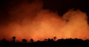 Miles de incendios forestales que arden en la selva amazónica amenazan con eliminar grandes partes de un ecosistema vital e insustituible.